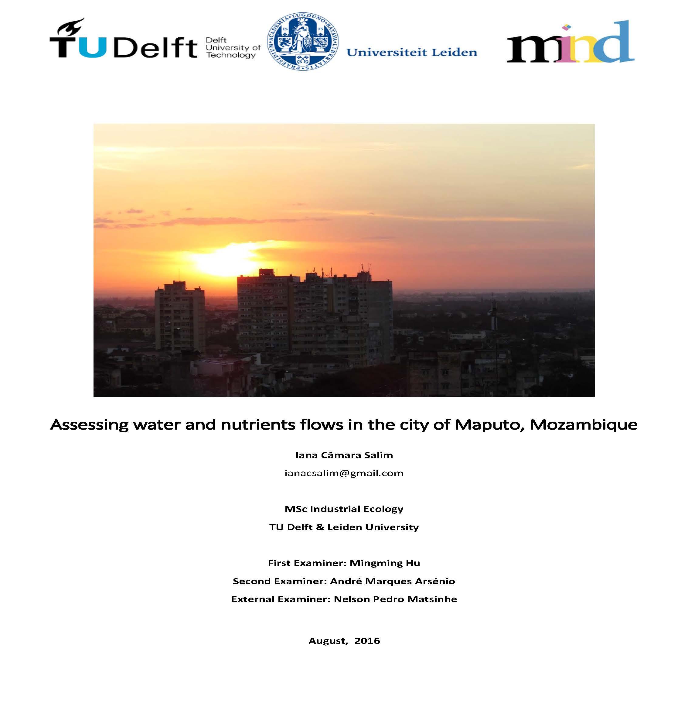 MFA_Maputo_IanaSalim_cover